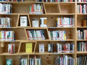 Assorted books in a bookshelf with dividers at odd angles.